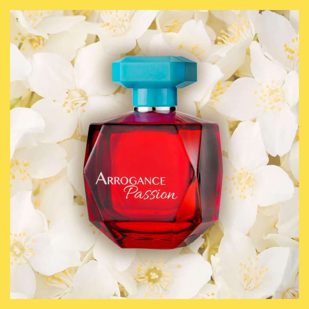 arrogance-passion-cornice-2